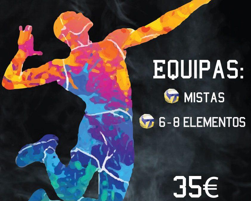 Liga Voleibol NEMUM | 1ª Edição